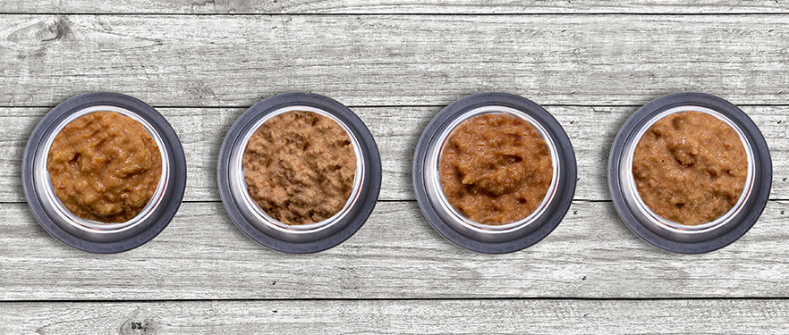 titatnium-dog-food-bowls