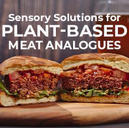 sensory-solutions-tile